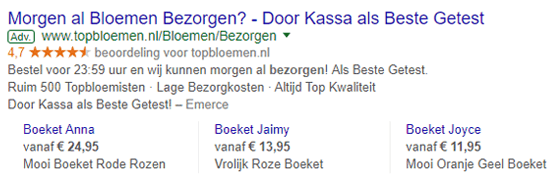 Voorbeeld-Google-AdWords-advertentie